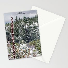 Winter Views Stationery Cards