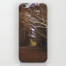 Light Fall iPhone Skin