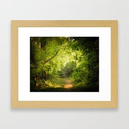 The Secret Path Framed Art Print