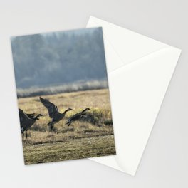 The Takeoff, No. 2 Stationery Cards