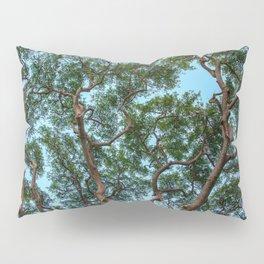 monkey pod tree Pillow Sham