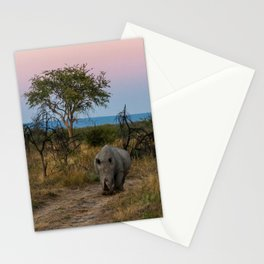 A Rhinoceros and a Sunrise in South Africa Stationery Cards