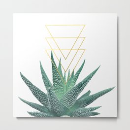 Succulent geometric Metal Print