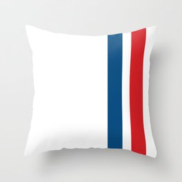 McQueen – Red and Blue Stripes Throw Pillow
