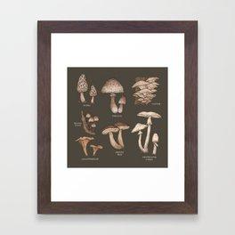 Mushrooms Framed Art Print