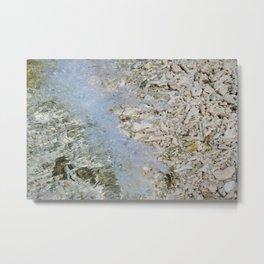 Coral shore Metal Print