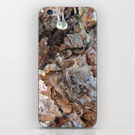 TEXTURES: Weeping Big Cone Pine Bark iPhone Skin