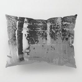 Color Chrome - B/W graphic Pillow Sham
