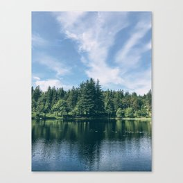 Bergen Forest Canvas Print