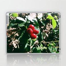 Spider Fruit Laptop & iPad Skin