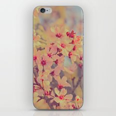 Vintage Blossoms - In Memory of Mackenzie iPhone & iPod Skin