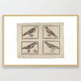 Deze vier vogels hebben al haar leven lang hooren fluyten en zingen Framed Art Print