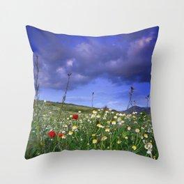 Spring sunset. Windy days Throw Pillow