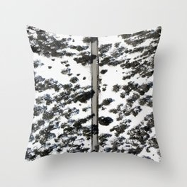 Snow from above Throw Pillow