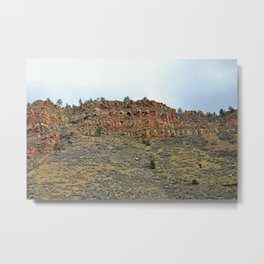 Colorado Red IV Metal Print