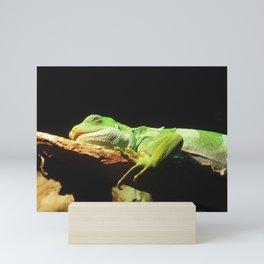 Iguana Mini Art Print