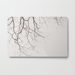 Bare - Winter Nature Photography Metal Print