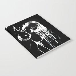 Reach 2 Notebook