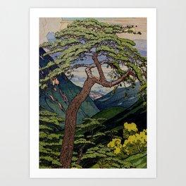 The Downwards Climbing Art Print