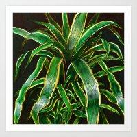 herba #01 Art Print