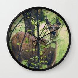 Peeking Wall Clock