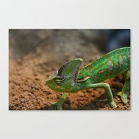 chameleon Canvas Prints featuring Chameleon by WonderfulDreamPicture