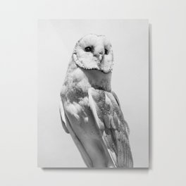 Owl Portrait Photography Minimalism Christmas | Animal Photography | Black and White Metal Print