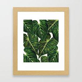 Tropical II Framed Art Print