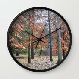 Red forest. Into the woods.... Wall Clock