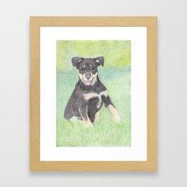 Puppy Portrait Framed Art Print