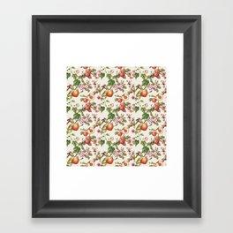 botanical fruits Framed Art Print