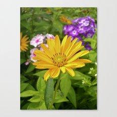 garden flower II Canvas Print