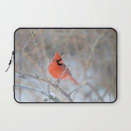 Hanging On (Northern Cardinal) Laptop Sleeve