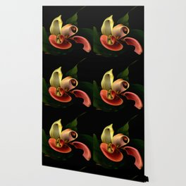 Red and Yellow Calla Wallpaper
