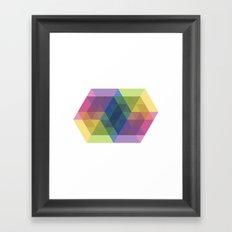 Fig. 030 Framed Art Print