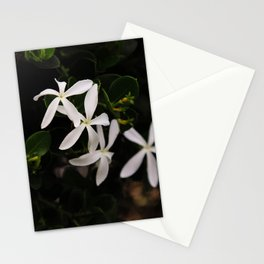 white plumeria Stationery Cards