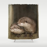 otters Shower Curtains featuring The curious otters by Pauline Fowler ( Polly470 )