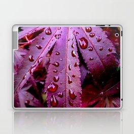 Lingering Rain Laptop & iPad Skin