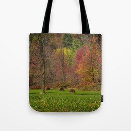 Lonely Bails of Color Tote Bag