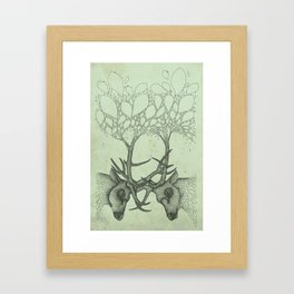 Into the Spring Framed Art Print