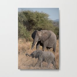 Elephant Mother and Young Metal Print