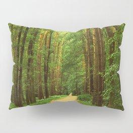 Forest path Pillow Sham