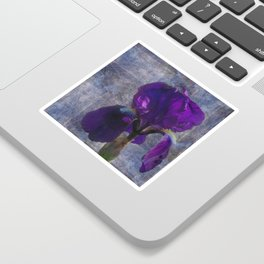 Captivating Iris Sticker