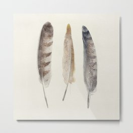 free wild feathers Metal Print