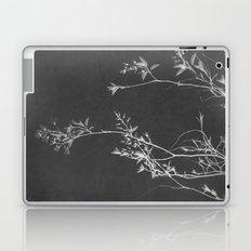 Fade To Black Laptop & iPad Skin