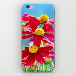 Cosmea 142 iPhone Skin