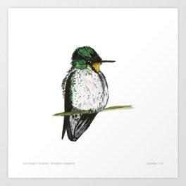 Juan Fernandez Firecrown Art Print