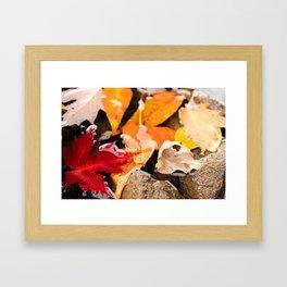 The River in Autumn. Framed Art Print