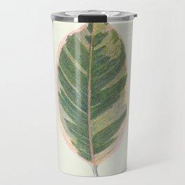 Rubber Tree Ficus Elastica Variegata Travel Mug