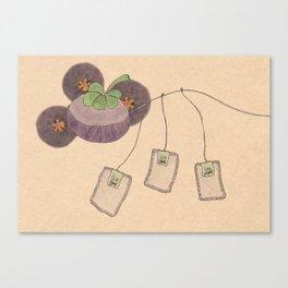 mangosteen & teabags Canvas Print